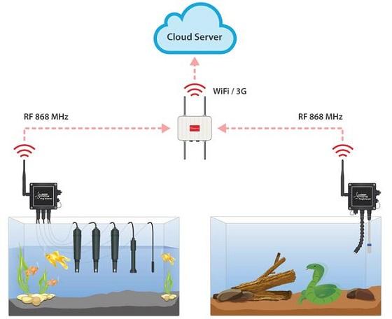 物联网案例:欧洲最大水族馆物联网解决方案