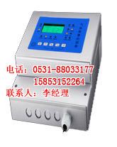 有毒气体报警器|有毒气体泄漏仪RBK-6000