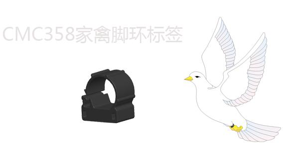 禽类脚环标签