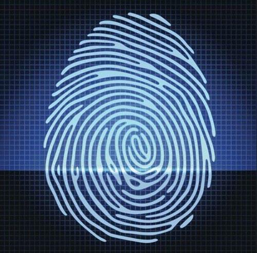指纹识别 PK 密码验证: 谁都不能代替谁!
