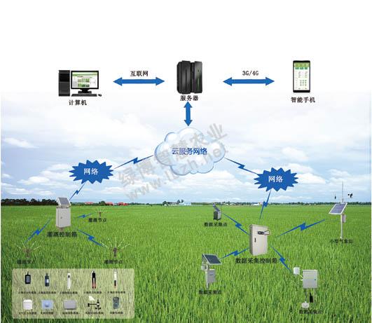 大田作物种植监控系统