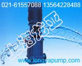 厂家直销200DLR300-20×5纯净水热水泵