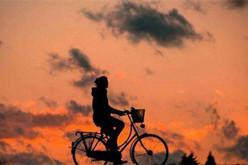 共享单车失败者:巨头恶意竞争 整个市场都玩坏了